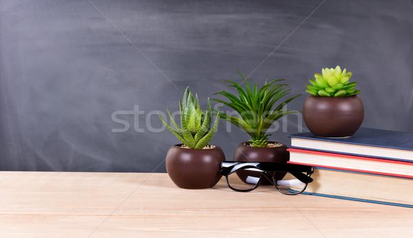 Student desktop groene planten boeken klas Stockfoto © tab62