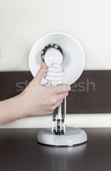 Replacing old light bulb with energy efficient bulb Stock photo © tab62