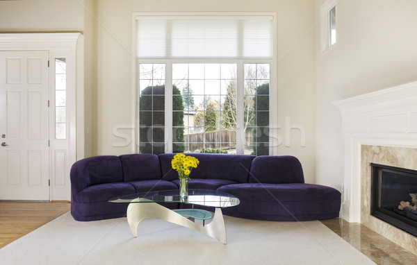 Large Modern Living Room  Stock photo © tab62