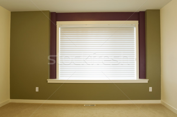 Freshly painted Accent Wall in Home  Stock photo © tab62