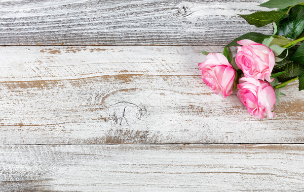 Mothers day gift of pink roses on rustic white wooden background Stock photo © tab62