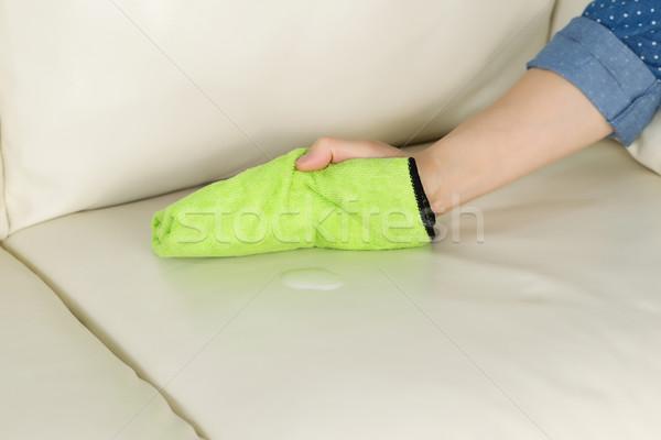 Pulizia soluzione pelle divano orizzontale Foto d'archivio © tab62