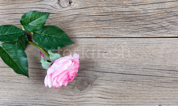 Lovely single pink rose for Mothers Day holiday on rustic wooden Stock photo © tab62