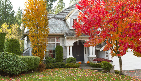 Residential Home during Fall Season Stock photo © tab62