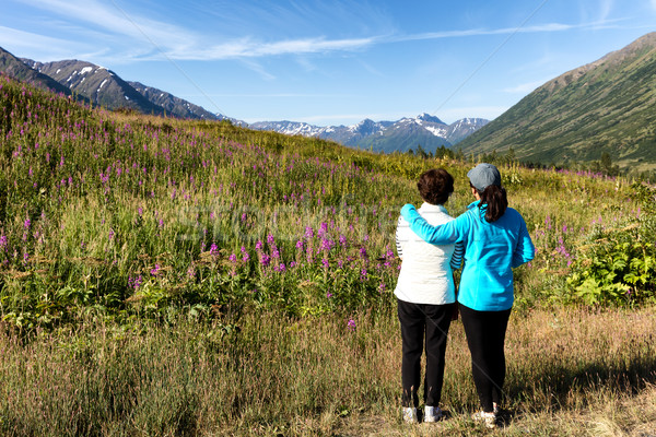 Mother and daughter looking at wild flowers with mountains and f Stock photo © tab62