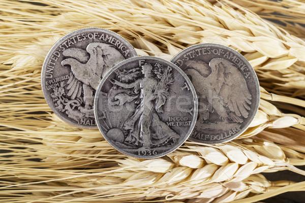 Silver Half Dollars on Wheat Stalk  Stock photo © tab62