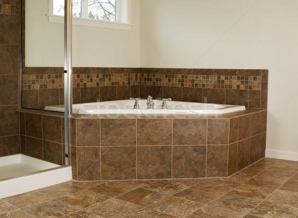 Maître salle de bain baignoire horizontal photo douche Photo stock © tab62