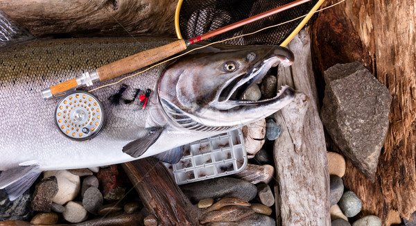 Vintage fly fishing equipment on top of large trout in riverbed  Stock photo © tab62