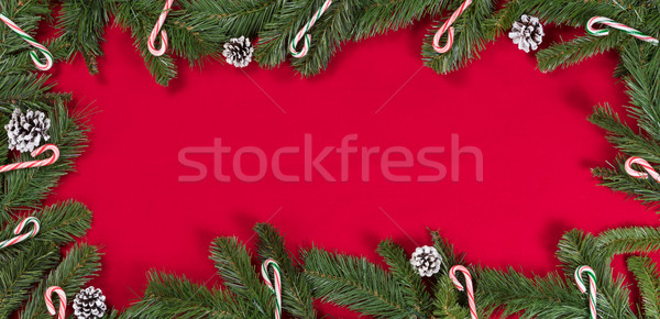 Evergreen branches and candy canes forming border on bright red  Stock photo © tab62