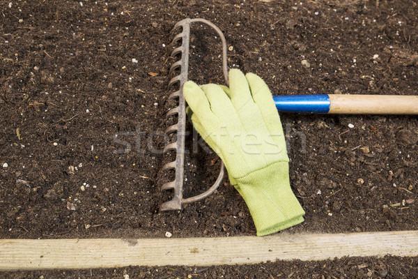 Kert gereblye kesztyű föld vízszintes fotó Stock fotó © tab62
