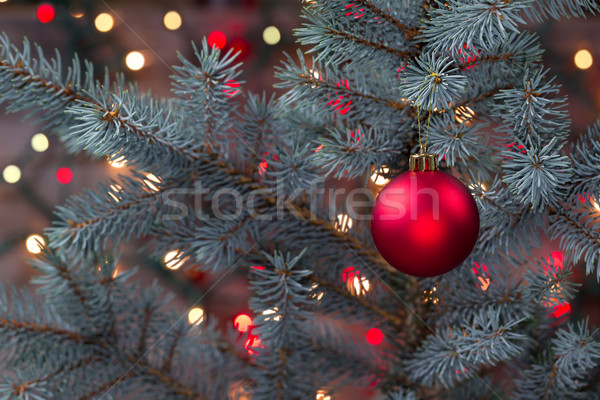 Stock photo: Single Red Ornament hanging from pine tree with glowing lights