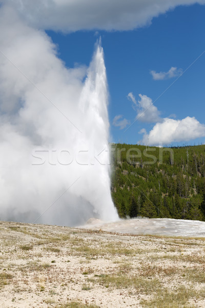 Old Faithful Geyser Erupting on Nice Summer Day  Stock photo © tab62