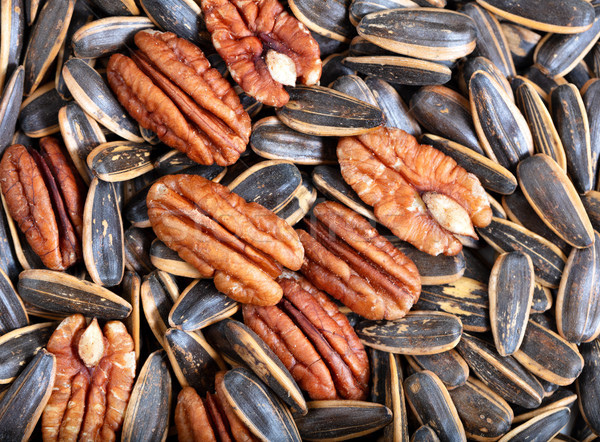 Unopened sunflower seeds and pecan nuts in filled frame format  Stock photo © tab62