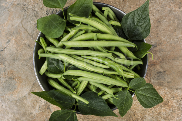 Freshly picked green beans in stainless steel bowl Stock photo © tab62