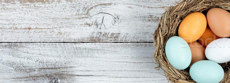 本当の 卵 鳥の巣 白 素朴な 木製 ストックフォト © tab62