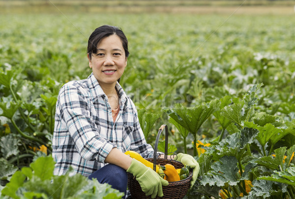 Mature women with basket of vegetables sitting in Field  Stock photo © tab62