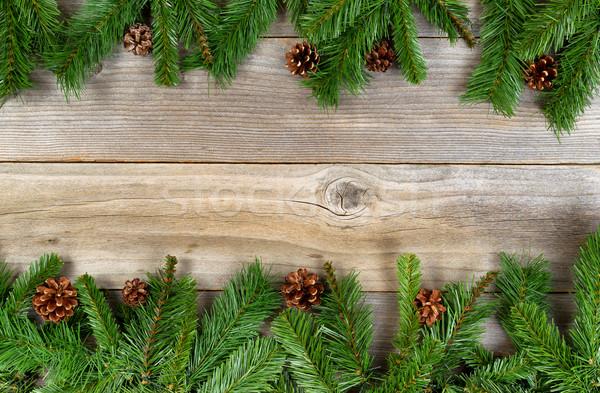Noel tatil sınır yaprak dökmeyen rustik Stok fotoğraf © tab62