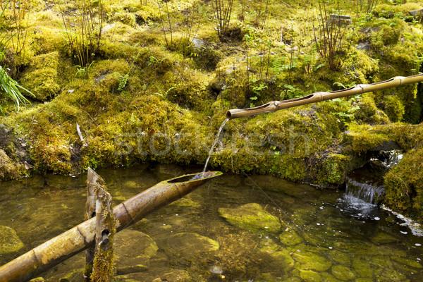 Spring Water in Japanese Garden Stock photo © tab62