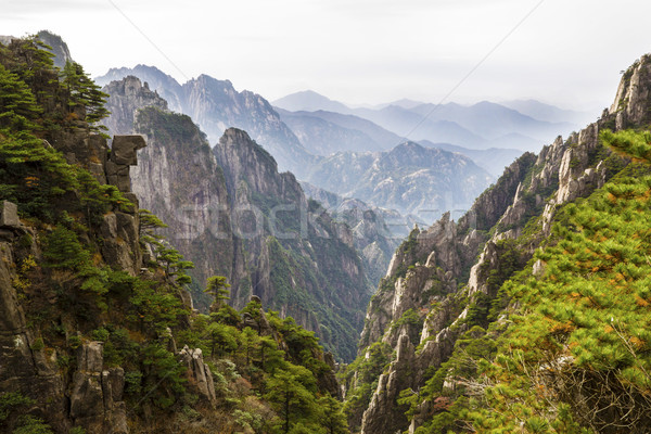 Sarı dağlar Çin sezon güz dağ vadi Stok fotoğraf © tab62