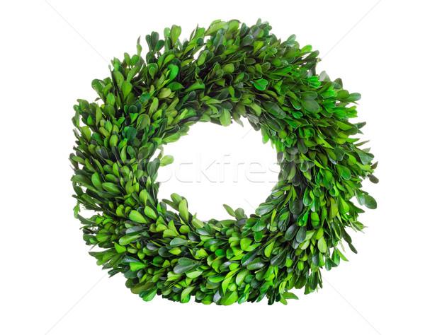 Wreath made of boxwood leaf wreath on white background Stock photo © tab62