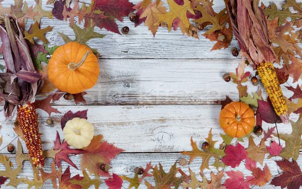 Circle border of Autumn Seasonal Decorations  Stock photo © tab62