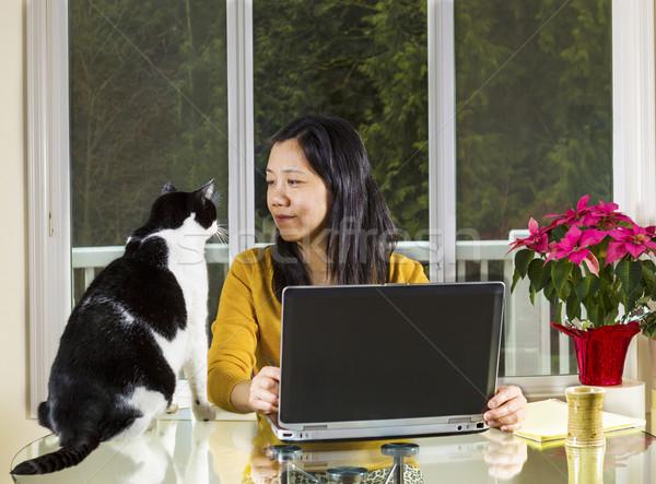 Rijpe vrouw werken home familie kat naar Stockfoto © tab62