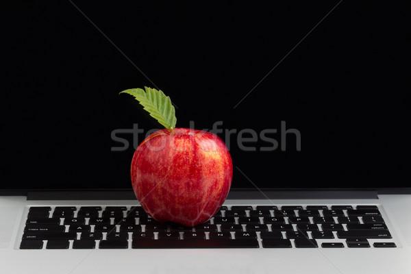 Stok fotoğraf: Taze · kırmızı · elma · üst · laptop · klavye · klavye · izlemek