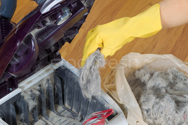 Aspirateur plastique sac horizontal photo main Photo stock © tab62