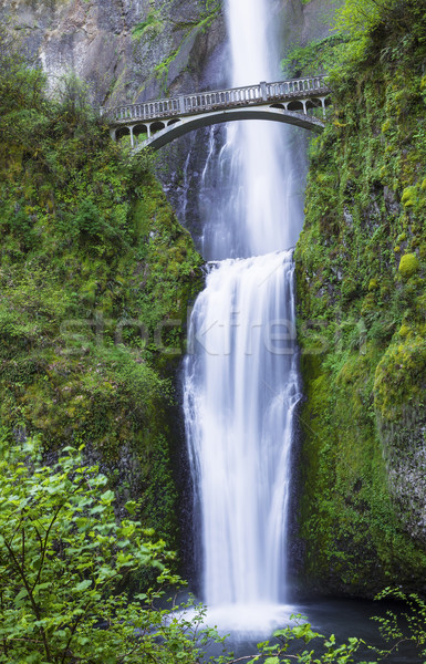 Northwest Pacific Waterfalls within Oregon State  Stock photo © tab62
