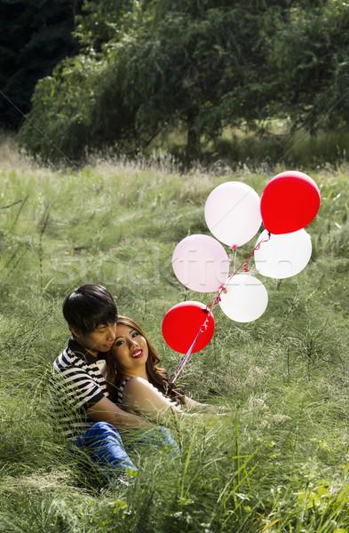 Lovers balony wysoki zielona trawa dziedzinie Zdjęcia stock © tab62