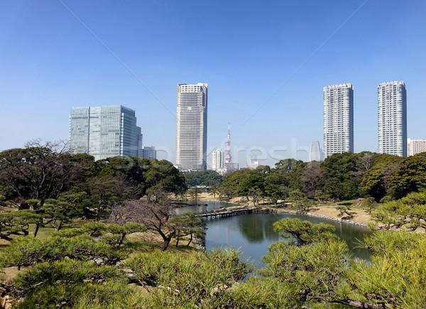 Naturaleza ciudad Tokio público parque horizonte Foto stock © tab62