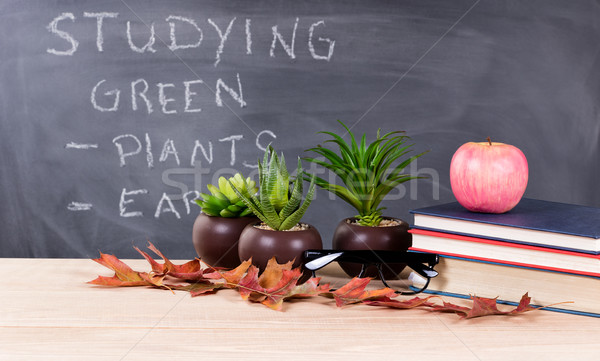 Studying green topics with nature objects in classroom environme Stock photo © tab62