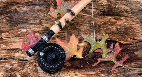 Volar pesca mojado edad capeado Foto stock © tab62