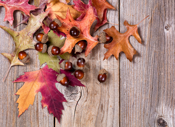 Autumn leaf and acorn decorations on rustic wooden boards Stock photo © tab62
