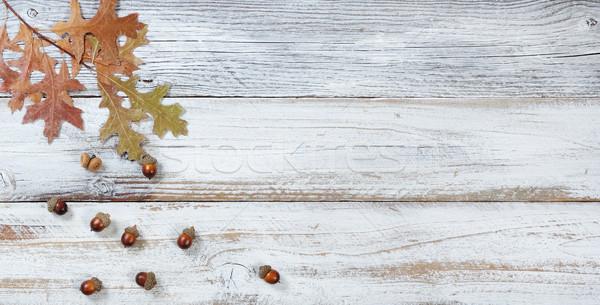 ストックフォト: 下がり · オーク · 葉 · 季節の · 葉 · ドングリ