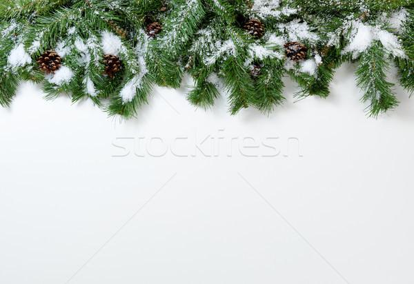 Foto d'archivio: Natale · albero · rami · pino · bianco · albero · di · natale
