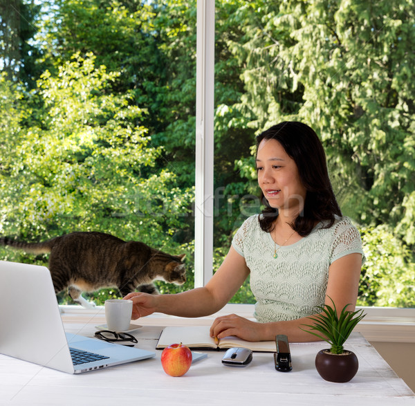 Woman working at home with daylight window and cat behind her  Stock photo © tab62