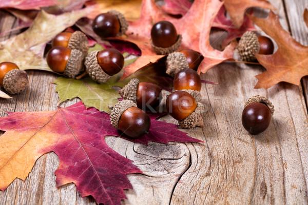 Saisonnier automne feuille gland décorations rustique Photo stock © tab62