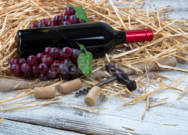 Bottle of red wine plus grapes on top of straw and burlap with w Stock photo © tab62