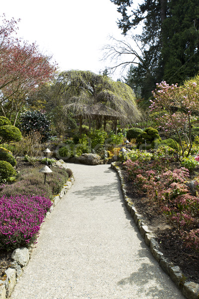 Trail to Hut in Japanese Garden Stock photo © tab62