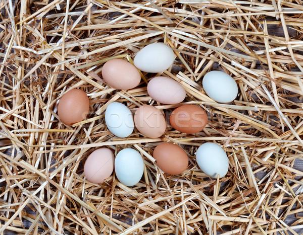 Naturalmente colorido ovos secas palha madeira Foto stock © tab62