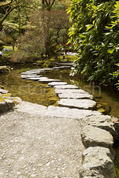Stepping Stones  Stock photo © tab62