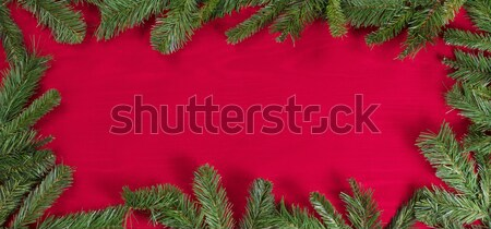 Evergreen branches forming border on red cloth  Stock photo © tab62