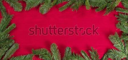 Evergreen rami confine rosso panno Foto d'archivio © tab62