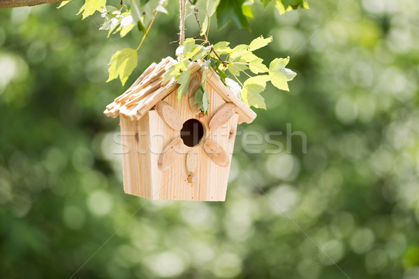 New Wooden Birdhouse hanging on tree branch outdoors  Stock photo © tab62