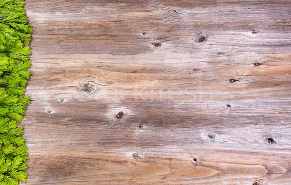 Photo stock: Nouvelle · branche · conseils · rustique · bois