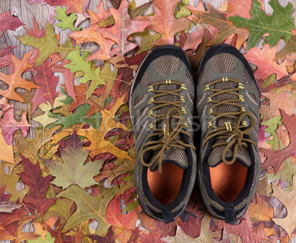 New hiking boots on autumn leaves and wood  Stock photo © tab62