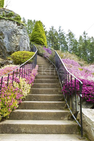 Stairway to Heaven  Stock photo © tab62
