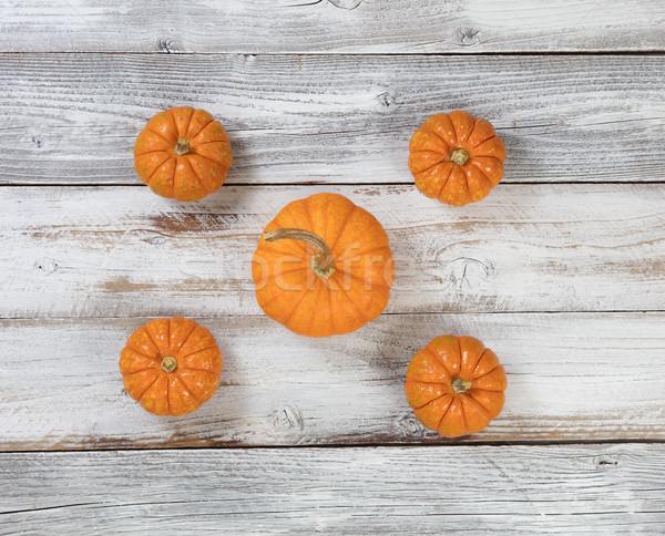 Autumn seasonal pumpkins for holidays on white rustic wooden boa Stock photo © tab62