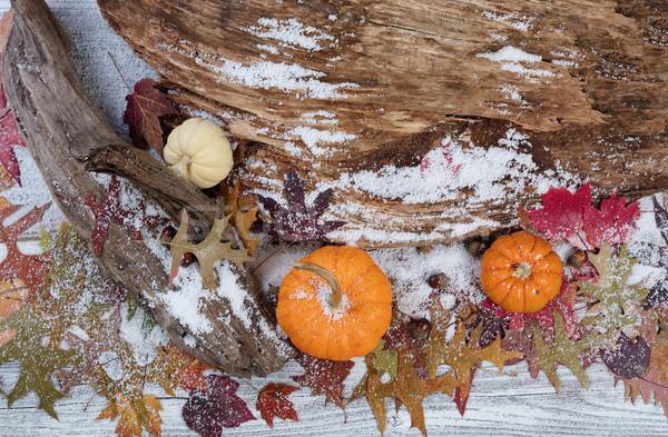 Rustykalny jesienią sezonowy dekoracje driftwood pozostawia Zdjęcia stock © tab62